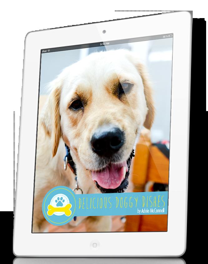 Delicious doggie dishes ebook